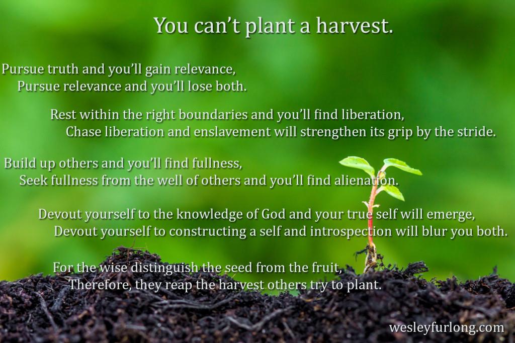Plantaseed